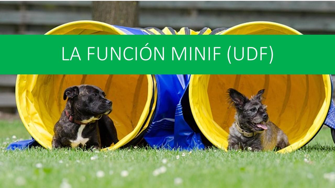 La función MINIF (UDF)